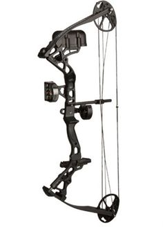 74 Best Bowfishing images in 2018 | Bow fishing, Arches, Arrows