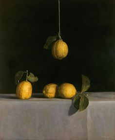 Kate Breakey - Slowlight Exhibition at Etherton Gallery- Still Life - Hanging Lemons (hand colored silver print) Still Life Photography, Color Photography, Inspiring Photography, Photography Ideas, Limes, Hand Sticker, Gelatin Silver Print, Painting Still Life, High Art