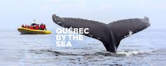 Road Trips and Getaways | Québec maritime<br>Photo Credit: Marc Loiselle
