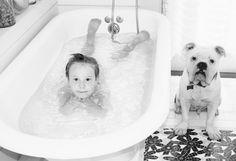 #bulldog #bulldogandbathtub #shannondukesphotography http://www.larkbainbridge.com/
