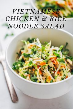 VIETNAMESE CHICKEN & RICE NOODLE SALAD subtitle This salad is the flavor bomb of my life. This Vietnamese chicken salad starts with tangy, salty, line-and-garlic-y dressing, which totally shines with the cooling mint + cilantro and a handful of fiery crisp