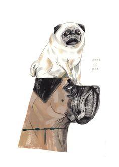 Animalarium: Portrait of a Dog