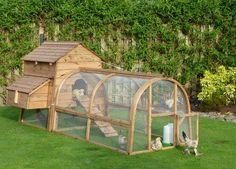 how to build a chicken coop  http://www.buildingachickencoop.com/?hop=rujira13