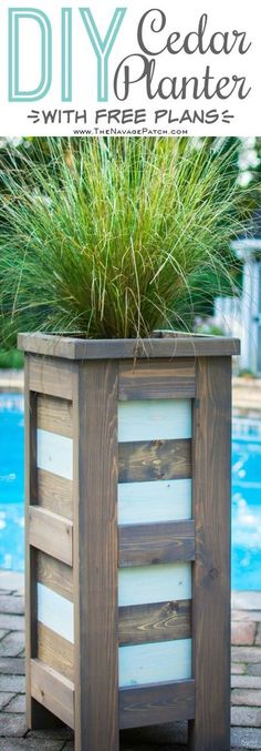DIY Cedar Planter {with free plans} | How to build an outdoor cedar planter box | Free cedar planter box plans | DIY coastal style tall and slim cedar planter | Step-by-step tutorial for tall and elevated cedar planter | How to build a square wood planter | Free raised panel wood planter plans | Budget friendly DIY and Woodworking | TheNavagePatch.com