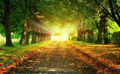 mejores-paisajes-naturales-zen-del-mundo-beautiful-natural-zen- para relajarse y meditar.