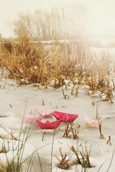 // paper boats on snow // Pretty Beach, Paper Ship, Water Me, Land Art, Water Crafts, Christmas Pictures, Double Exposure, Art Lessons, Color Splash