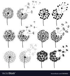 Similar images, stock photos and stock vectors about Floral elements for design, dandelions. 162682307 - Set of abstract Dandelions for spring season - Dandelion Drawing, Dandelion Art, Dandelion Tattoo Design, Dandelion Tattoo Small, Doodle Drawings, Doodle Art, Flower Doodles, Motif Floral, Rock Art