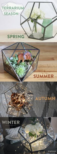 You can recycle your terrarium for spring, summer fall and winter! Reuse everyday objects and decor for every season.