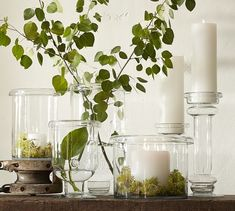 Branson Glass Pillar Candle Holders | Pottery Barn