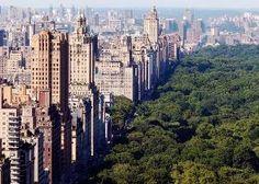 New York City, New York by IndulgenceLady102