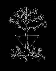"""Heinrich Cornelius Agrippa - The Cosmic Tree of Universal Matter with Seven Branches and Opposing Triangles, """"De Occulta Philosophia"""", 1533. The symbol of the cosmic tree in both its upright and inverted forms is clearly found in the Rg Veda. Both..."""