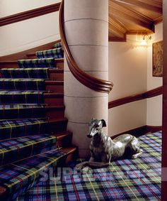 Blue and green tartan carpet on stairs and landing with statue of dog against stone pillar Stock Photo Tartan Stair Carpet, Pillars, Stairs, Carpet Stairs, Family Room, Tartan Carpet, Homey, Stairways, Stone Pillars