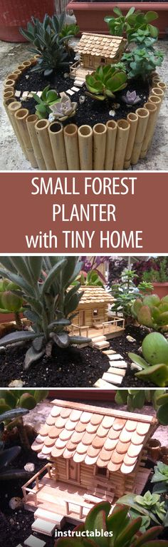 Small Forest Planter with Tiny Home
