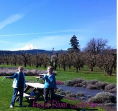 BFF blowing bubbles together & relaxing in the lavender garden! Beautiful Ladies! The lovely lady on right, is my dear Mother, Lois❤This could be You! #lavenderfarm #organic #hoodriver #oregon #imforeverblowingbubbles #bubbles #mountain #mthood #flowers #garden #bff