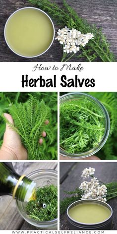 Herbal healing salves are simple and effective ways to enjoy the benefits of herbal medicine, and they couldn't be easier to make at home. Salves are semi-solid at room temperature, making them easy t Herbal Magic, Herbal Remedies, Natural Remedies, Health Remedies, Healing Herbs, Medicinal Plants, Natural Healing, Herbal Plants, Nature