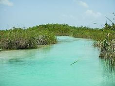 Wide open space in the Riviera Maya. Freshwater canal perfect for floating (photo JK Robinson)