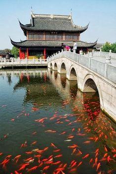 Zhouzhuang, Shanghai, China                                                                                                                                                     More