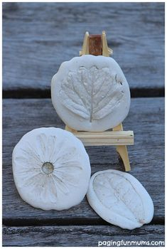 Nature Inspired Plaster Impressions - A fun and EASY art project for kids and adults!