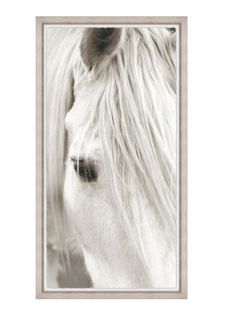 Focusing on White Horse III Framed print with torn edge mounted on white matte board with rustic washed wood frame Made in the USA Measures 27.75 x 51.75