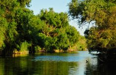 Summary of best photos by PRIMEVAL. See below: The summary of best photos is updated. Danube Delta, Danube River, Black Sea, Romania, Cool Photos, Country, Water, Outdoor, Painting