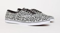 Vans Authentic Lo Pro Leopard