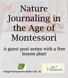 Whether you are a Montessori teacher, homeschooler, traditional classroom teacher, or other teacher of a progressive methodology, I think you will get a lot out of these posts. I talk about the nature journal as a cross curricular integration tool specifically and give you a full lesson plan for creating your own journals from scratch and ways to use them everyday.