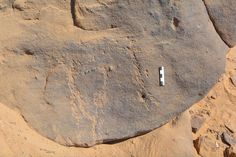 Researchers uncovered rock carvings from Egypt's Stone Age showing mysterious mask-wearing dancer