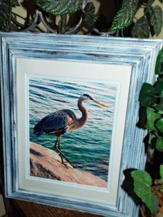 Beach Photography, Birds, Blue heron, shabby chic decor, distressed frame, upcycled frame, framed ocean photography, beach decor, coastal