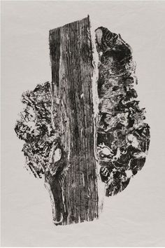 White-Oak-Burl, Cross-section tree print by #CCArts alum Bryan Nash Gill