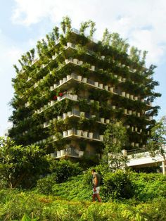 Flower Tower,Paris, France Plants growing in these pots are bamboo . They are very different species, selected among some 1,300 existing varieties. The architect, who went to look at Portugal , has chosen depending on the adjacent garden and stone buildings all around. The bamboo plants are grasses that can live up to 3000 meters above sea level, they are resistant to low temperatures and wind....