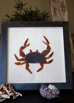 This handcrafted unique crab features genuine uncut sea glass that was hand picked from the beach. The powerful mysterious sea created each piece. This crab is made of genuine pieces that have come from the water, and have not been altered. Permanently mounted on a piece of