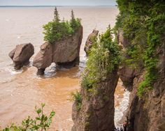 Hopewell Rocks on the Fundy Coastal Trail, one of our unforgettable Canadian Road Trips Banff National Park, National Parks, Hopewell Rocks, Ontario Travel, East Coast Travel, Road Trip Adventure, Bucket List Destinations, Canada Travel, Countries Of The World