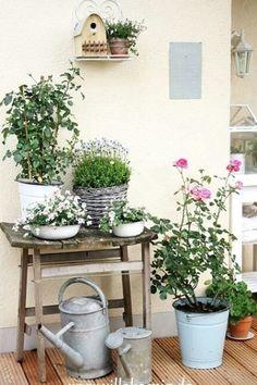 Container Flowers, Container Plants, Container Gardening, Balcony Garden, Garden Pots, Balcony Ideas, Garden Chairs, Plantas Indoor, Little Gardens