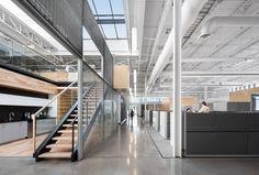 Global Vision Head Office | Rubin & Rotman Architects
