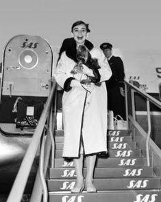 Audrey Hepburn on plane #audreyhepburn