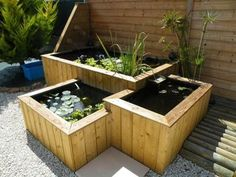 Aquaponics With Ducks And Fish Patio Pond, Diy Pond, Ponds Backyard, Backyard Landscaping, Small Water Gardens, Fish Pond Gardens, Outdoor Water Features, Pond Water Features, Diy Water Feature
