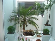 Artificial Plants Make Sense - Artificial Plants - Big Indoor Plants, Indoor Flowers, Garden Landscape Design, Garden Landscaping, Indoor Greenhouse, Interior Garden, Balcony Garden, Artificial Plants, Winter Garden