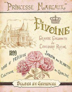 French Seed Packet III Kunstdrucke von Daphne Brissonnet - AllPosters.at