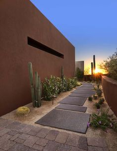 Side yard pathway idea - minus the cactus