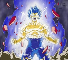 Vegeta Super Saiyan Blue Evolution