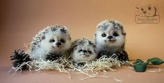 how adorable are these needle felted hedgehogs I need to make these!