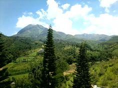 Panderman Hill-Indonesia