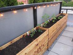 Urban Garden Design easy diy planter box - How To Make Wooden Planter Boxes Waterproof? Vegetable Planter Boxes, Planter Box Plans, Wood Planter Box, Vegetable Gardening, Organic Gardening, Urban Gardening, Planter Ideas, Balcony Planter Box, Raised Planter Boxes