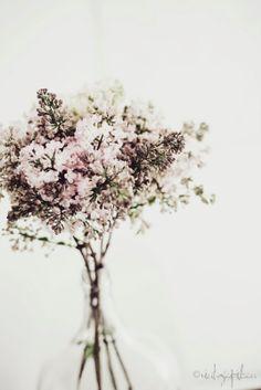 Green and white flower arrangement Deco Floral, Arte Floral, My Flower, Beautiful Flowers, Romantic Flowers, Color Mauve, Plantar, Floral Arrangements, Flower Arrangement