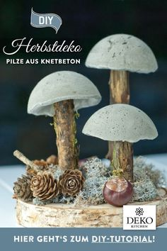 Cool DIY autumn decoration with mushrooms made of kneading concrete to make yourself. This DIY project… - Advent calendar ideas Cool DIY autumn decoration with mushrooms made of kneading concrete to make yourself. This DIY proj Cool Diy, Project Yourself, Make It Yourself, Inexpensive Flooring, Diy And Crafts, Crafts For Kids, Cement Crafts, Make Your Own, How To Make