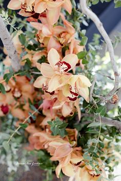 DY.o Events (aka. Duo) Peachy Orchids with soft greens and dried sticks