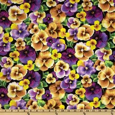 Perfect Pansy Large Pansies Yellow