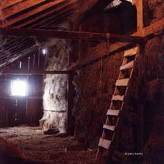 Ch 38.2 After breakfast Darcy headed to the stables and climbed into the hayloft. He had played there a lot as a child. The head groom had kept him occupied brushing and currying the horses, and helping to muck out the stalls. He'd climbed around in the hayloft finding eggs that wayward chickens had laid. After his parents had died, he'd felt less lonely surrounded by the hay, and he imagined that the chickens did too, making their nests in hidey-holes between the bales.