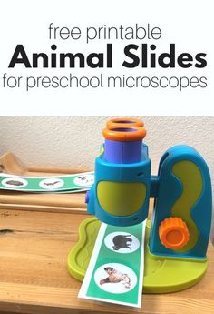 Free Animal Slides for Preschool Microscope – No Time For Flash Cards Free printable animal slides for your preschool microscope. A great resource for preschool science center or homeschool science activity. Science Center Preschool, Science Area, Science Classroom, Science For Kids, Earth Science, Summer Science, Science Fun, Preschool Kitchen Center, Preschool Classroom Centers