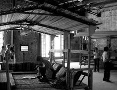 Bahrein Pavilion (Golden Lion for the best National Participation). 2010 Venice Biennale